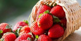 10 причин, почему необходимо есть клубнику